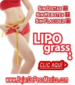 LIPO GRASS fly anuncio